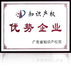 广东省知识产权局优势企业奖