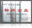 2008广东省自主创新标杆企业