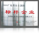 2008 Leading enterprise for innovation of Guangdong Province